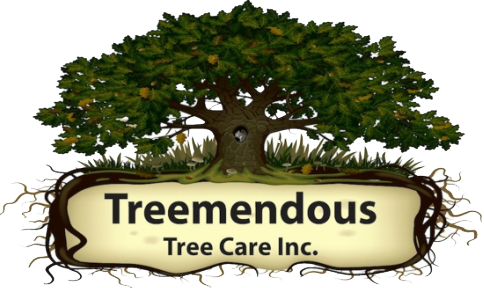 Treemendous Tree Care, Inc.